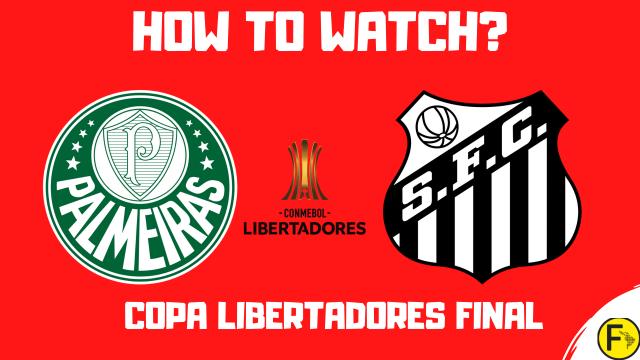 Palmeiras vs Santos Copa Libertadores Final